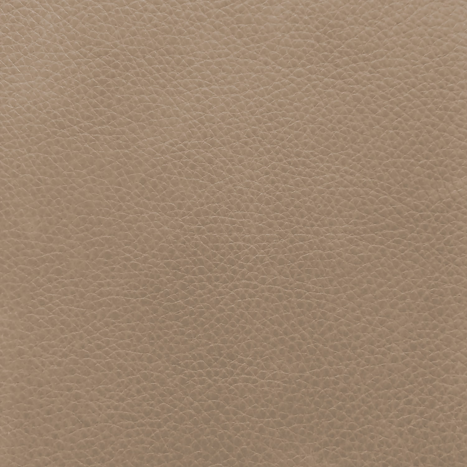 Haven: Champagne (grade G): #HAV6013<br>Thick, soft, rich translucent die with some natural hide characteristics; light protection